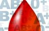 Диета по группе крови: подробный список продуктов