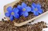 Чем помогают семена льна для похудения?