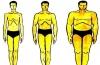 Как вычислить идеальный вес мужчины по росту