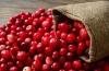 Полезные напитки для стройной фигуры: калорийность клюквенного морса