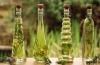 Как использовать эфирные масла для похудения у себя дома?