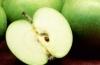 Как долго придерживаться диеты на фруктах: отзывы и мнения