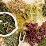 Отвар трав для похудения: самые популярные травы