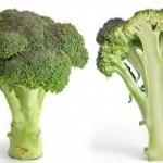 Диета на брокколи: результаты и отзывы