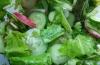 Салат из огурцов диетический: вкусные рецепты для похудения