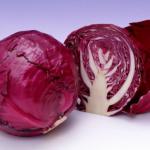 Готовим диетические овощные салаты: салат из красной капусты