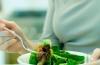 Секреты грейзинг диеты
