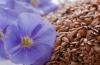 Семена льна для похудения. Похудение с помощью семян льна