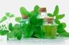 Травы для улучшения обмена веществ