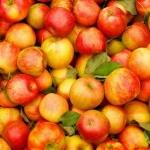 Равноценный обмен: яблоки вместо шоколада