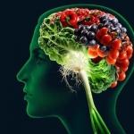 Диета для омоложения мозга