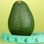 Как худеть с помощью авокадо?