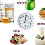 6 преимуществ дробного питания