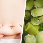 Экстракт артишока для похудения