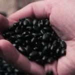 5 бобовых, которые помогут похудеть и не голодать