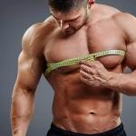 Сколько мышечной массы можно набрать за месяц