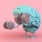 Ученые подтверждают: чем больше упражнений, тем лучше память