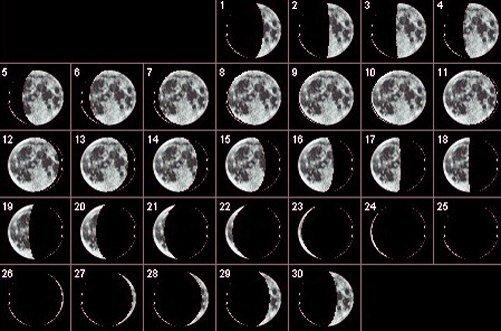 лунный календарь для похудения фото