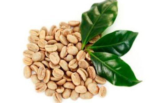 свойства зеленого кофе фото