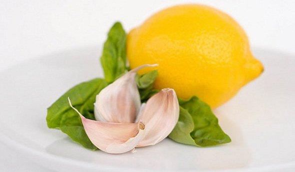 чеснок для снижения холестерина в крови